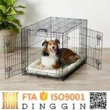 El hierro la caja de perros mascotas en casa