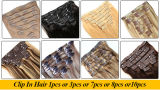 100 Menschenhaar Peruvian 2016 Virgin Hair Grey Color Klipp auf Hair Extension