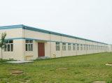 Edificio prefabricado de la estructura de acero (SSW-423)