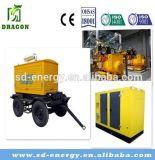 Centrale elettrica del biogas per trattare spreco