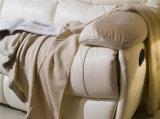 جلد أريكة /Recliner أريكة (703#)