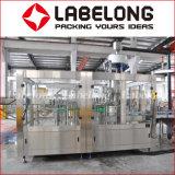 Machine de remplissage de bouteilles automatique pour le thé vert de lait