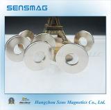 Alternator van de Magneet van de Ring NdFeB van het Neodymium van de vervaardiging N48m de Permanente