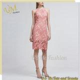 Платье шнурка официально платьев изображений способа одежд верхних женщин сексуальное