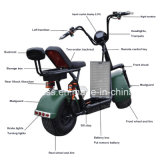 Leistungsfähiger grüner elektrischer Roller mit schwanzlosem Motor 1000W