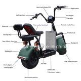 1000Wブラシレスモーターを搭載する強力な緑の電気スクーター