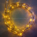 직경 11mm LED 밧줄 지구 점화 조경 LED 점화