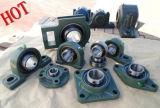 Kissen-Block-Peilung, justierbare Peilung-Geräte (UCFA204 UCFA205 UCFA206)