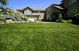Североамериканская популярная синтетическая лужайка для сада и украшения
