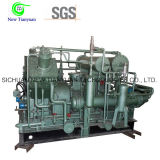Компрессор газа поршеня для малой бензоколонки