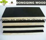 Feuille de contre-plaqué de bois dur pour la construction