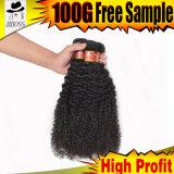 Weave бразильских волос курчавый от одного дарителя