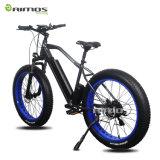 48V 11.6ah 1000Wによって隠される電池の脂肪質のタイヤの電気自転車