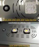 sensore di movimento 30W LED Integrated tutto in un indicatore luminoso di via solare di 12V LED