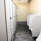 Armoire de toilettes de taille standard / WC Partition système
