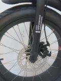Bike полной автошины подвеса 20 ' тучной электрический (FR-TDN05Z-fat)