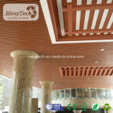 Het gebouwde Binnen Houten Samengestelde Plafond van pvc WPC
