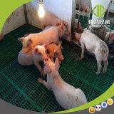 이유 축사가 고품질 최신 복각을%s 현대 디자인 돼지 농장에 의하여 직류 전기를 통했다