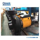 Pompe électrique centrifuge de turbine en laiton de Dtm