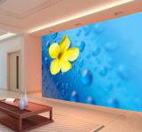 Lisser le mur intérieur Revêtement forte liquidité bonne résistance à l'abrasion de la peinture murale