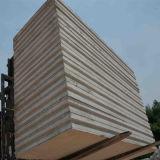 Painel de sanduíche rápido do cimento do EPS do tempo da economia da instalação para o projeto de edifício