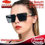 Nueva señora Polarized Sunglasses de la manera 0019