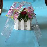 Ясная коробка Clamshell PVC для коробки упаковки волдыря