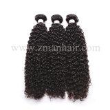 Brillant doux Kinky Curly Remy Hair Extensions pour la femme