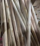 環境に優しく自然な木のほうきかブラシまたはモップのハンドル