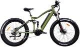 고속과 큰 힘 가득 차있는 현탁액 판매 (TDE10Z-4)를 위한 뚱뚱한 타이어 E 자전거
