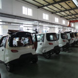 Il EEC ha dimostrato le piccole automobili elettriche poco costose fatte in Cina
