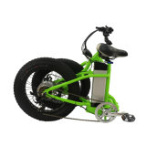 48V電気自転車を折る電気バイク350With500Wの後部ハブモーター