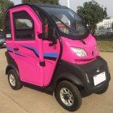 1000W 3人のための鉛酸蓄電池が付いている電気スクーター車