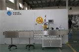 Gemaakt in Machine van de Etikettering van de Sticker van het Dienblad van het Ei van China de Automatische Zelfklevende