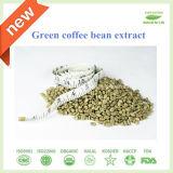 純粋な高品質の緑のコーヒー豆のエキスの製造業者/Chlorogenic酸99%