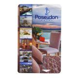 개인화된 인쇄할 수 있는 주문 백색 PVC 카드