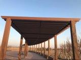 Pergola composito del giardino decorativo ecologico esterno con 60*160mm