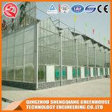 Дом поликарбоната стальной рамки Китая гальванизированная Venlo зеленая