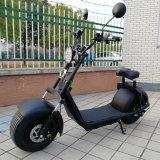 Cee Harley titulados Scooter Eléctrico 1000W para países da UE