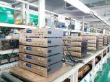 250W professioneller fehlerfreier Digital Audioendverstärker D250