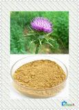 レバー保護の原料のためのミルクアザミのエキスのSilymarin Silybin 30%の~ 98%の粉