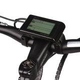 500W Quente Venda Bicicleta Elétrica com Design Cuidadosamente Trabalhado