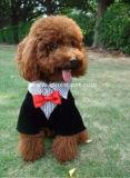 محبوب يلبّي عرس كلب ملابس كلب دعوى باردة
