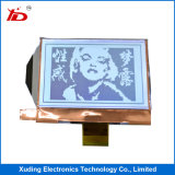 étalage de TFT LCD de résolution de 5.0 ``480*272 Fwvga pour largement des applications