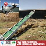 El equipo de alimentación de aves de corral para la granja de aves de la capa