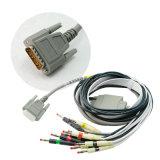 Maschine bewegliches EKG Maschine-Stella Digital-12-Channel ECG