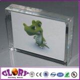 De uitstekende kwaliteit paste de Transparante AcrylTribune van de Vertoning aan