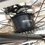 Bici elettrica della gomma grassa americana del modello a caldo