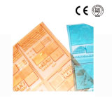 Plaque d'impression flexographique en nylon de Flexo pour des sachets en plastique