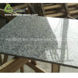 На заводе нарезка по размеру по окончании полированной плиткой на стене природных G603 лунного Pearl серого гранита